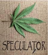 marijuanaspeculatorlogo